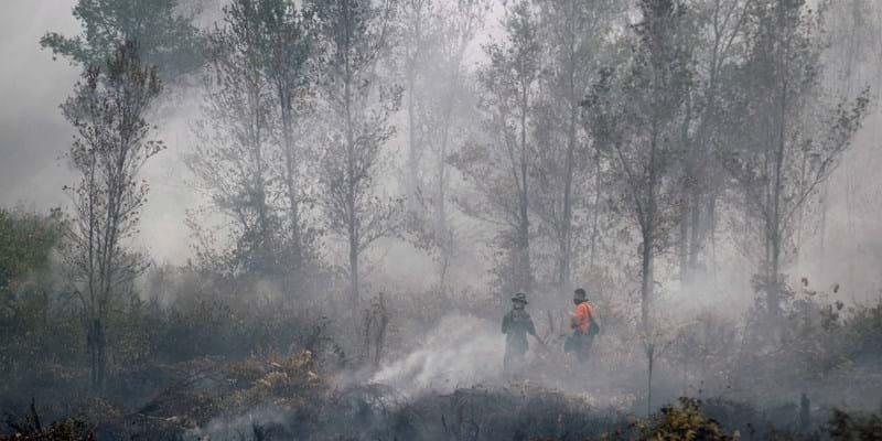 Indonesia Haze. Indonesia. September 2015. Photo Credit: ©Bagus Indahono/Corbis