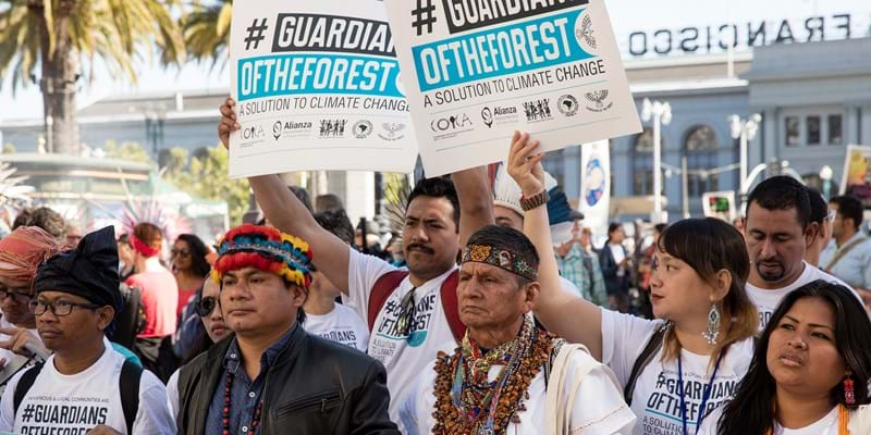 Indigenous rights activists, Guardians of the Forest