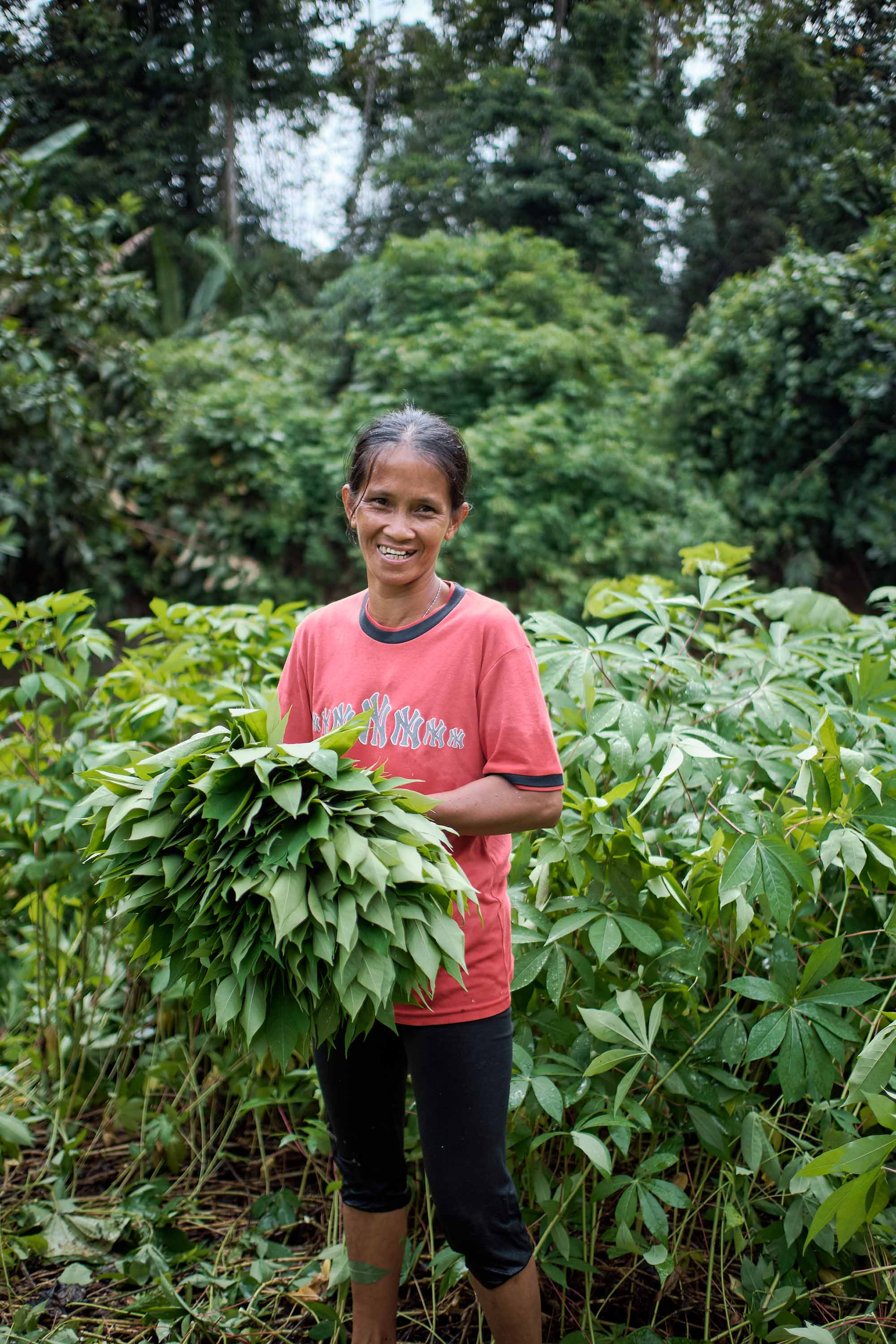 A woman with black hair and in pink shirt holds vegetable leaves harvested from the lush tropical rainforest