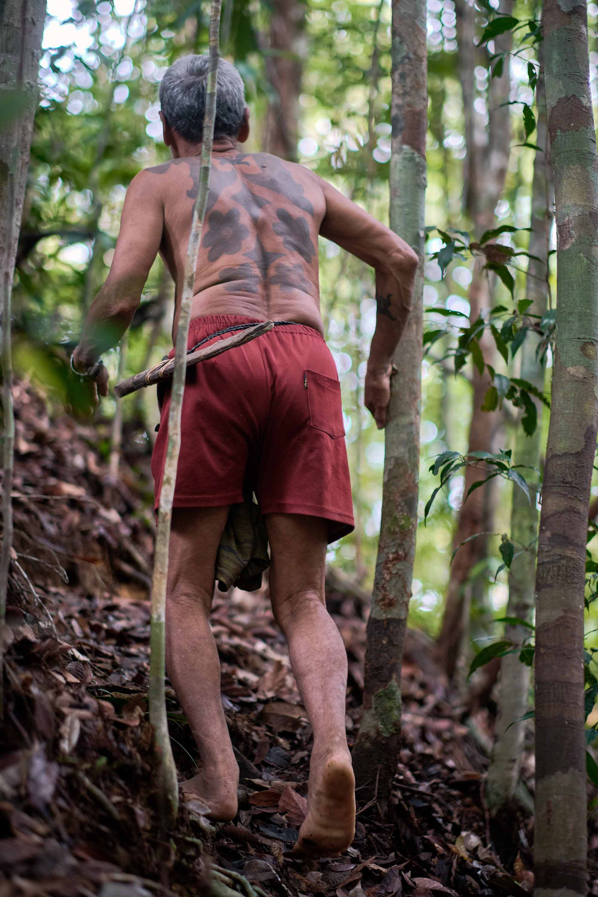 Shirtless Sungai Utik elder Apai Janggut in red shorts walks uphill barefoot in his community's forestland
