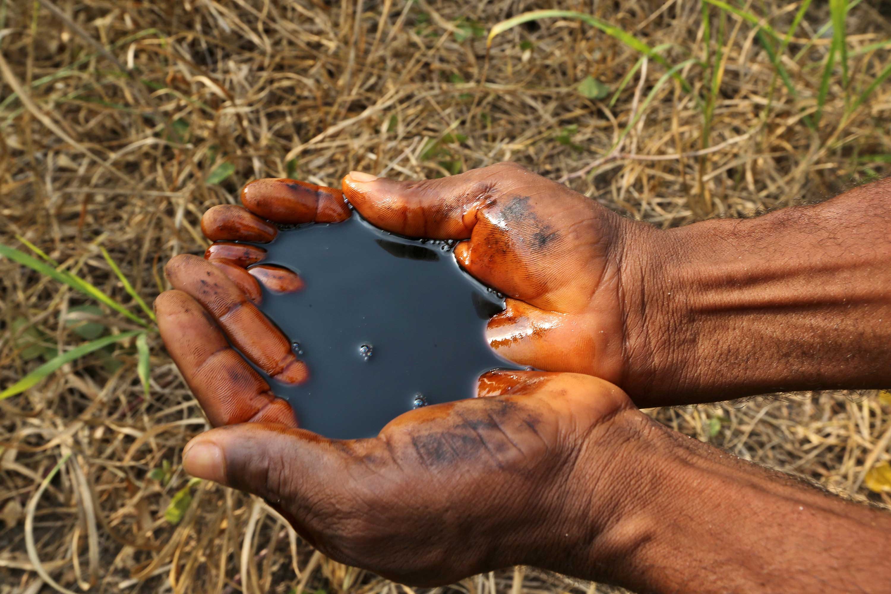 The hands of a Nigerian person cups a pool of black oil above a field.